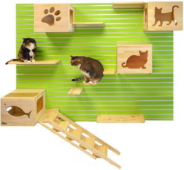 Feline Enrichment Wall