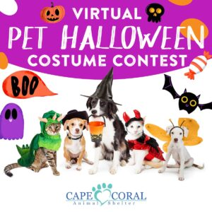 Virtual Pet Halloween Costume Contest