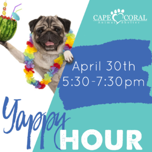 April Yappy Hour
