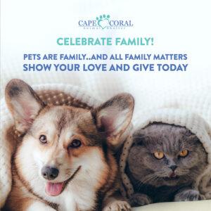 Celebrate Family Fundraiser