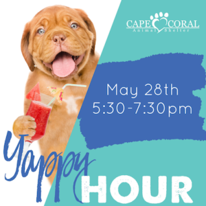 CCAS May 28th Yappy Hour